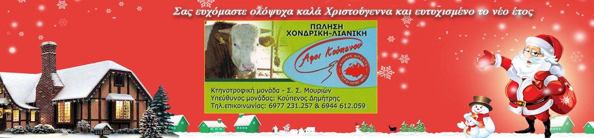 koupenos_ready